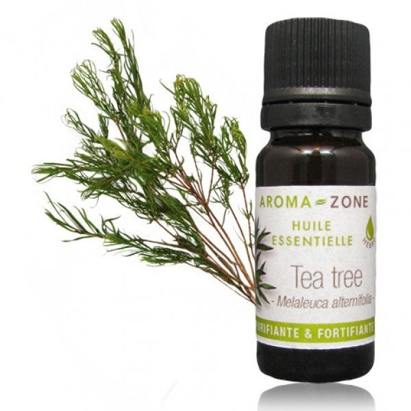 Australia Tea tree oil - Melaleuca alternifolia